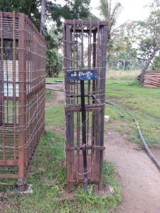 LTTE Prisoner's Cages